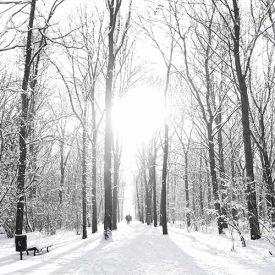 Stadtführung Potsdam im Winter