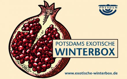 Potsdams exotische Winterbox