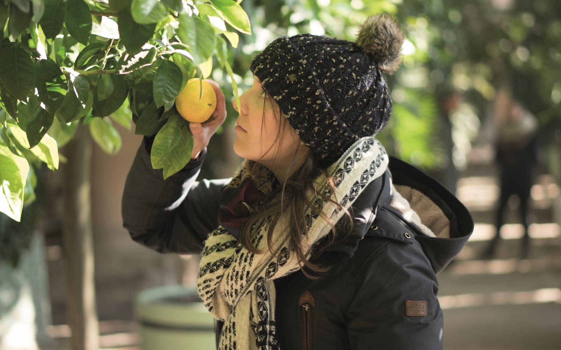 Exoten im Winterschlaf © SPSG, Orangerie-Pflanzenhallen, Park Sanssouci, P.Pasler