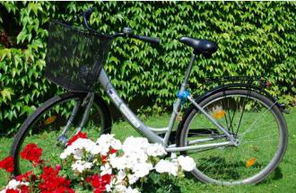 Fahrrad, Foto: Tourismusverband Havelland e.V.