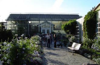 Botanischer Garten der Universität Potsdam, Foto: Jan Hoffmann